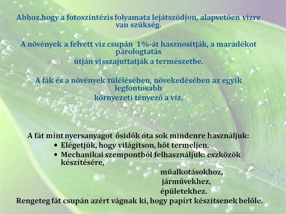 Ahhoz,hogy a fotoszintézis folyamata lejátszódjon, alapvetően vízre van szükség. A növények a felvett víz csupán 1%-át hasznosítják, a maradékot párol