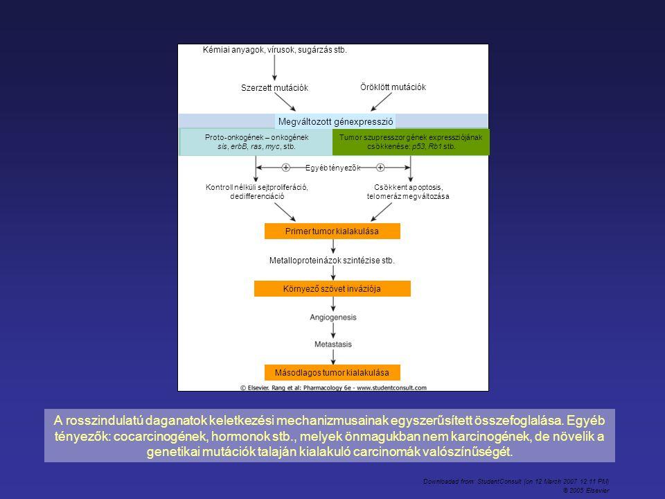 A rosszindulatú daganatok keletkezési mechanizmusainak egyszerűsített összefoglalása. Egyéb tényezők: cocarcinogének, hormonok stb., melyek önmagukban