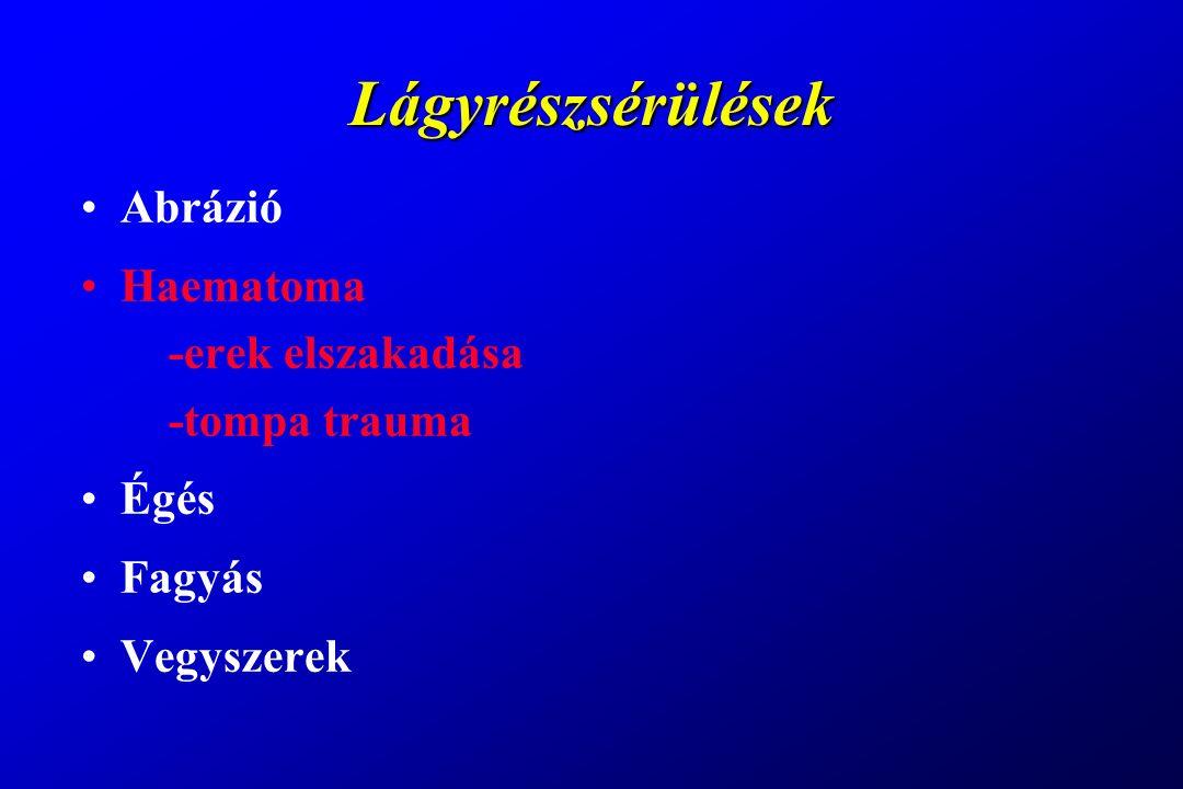 Lágyrészsebek Metszett (vulnus incisivum) Szakított (vulnus lacerum) Szúrt (vulnus punctum) Harapott (vulnus morsum) Lőtt (vulnus sclopetarium)