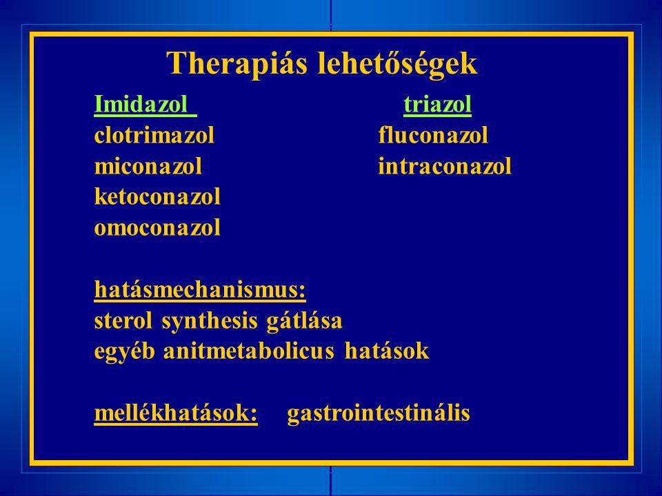 Therapiás lehetőségek Imidazol triazol clotrimazol fluconazol miconazol intraconazol ketoconazol omoconazol hatásmechanismus: sterol synthesis gátlása egyéb anitmetabolicus hatások mellékhatások: gastrointestinális