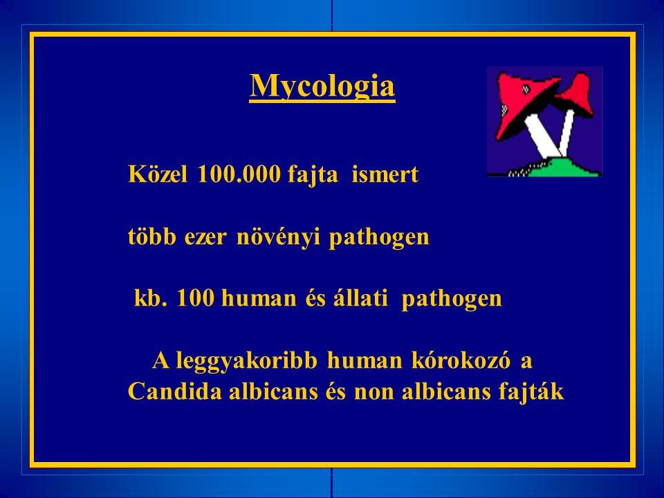 Mycologia Közel 100.000 fajta ismert több ezer növényi pathogen kb. 100 human és állati pathogen A leggyakoribb human kórokozó a Candida albicans és n