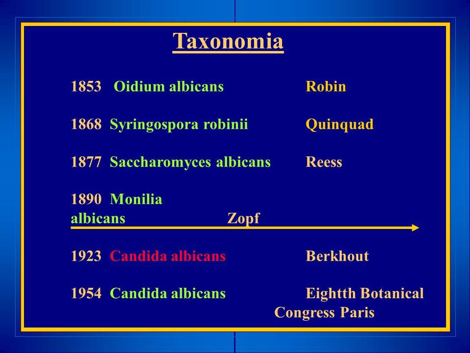 Taxonomia 1853 Oidium albicansRobin 1868 Syringospora robinii Quinquad 1877 Saccharomyces albicans Reess 1890 Monilia albicansZopf 1923 Candida albica
