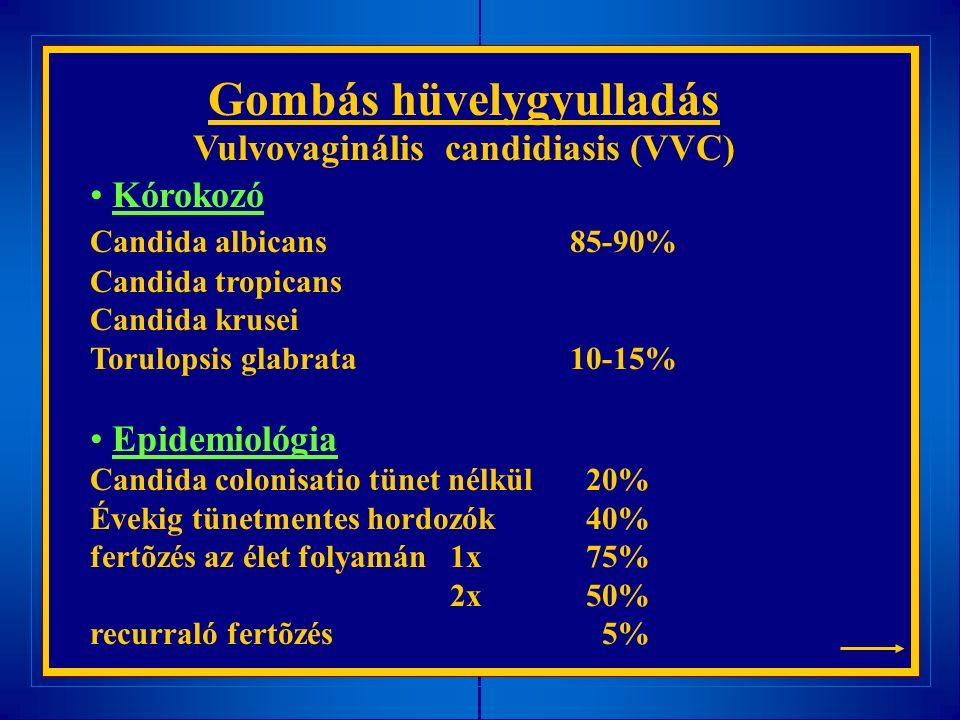 Gombás hüvelygyulladás Vulvovaginális candidiasis (VVC) Kórokozó Candida albicans85-90% Candida tropicans Candida krusei Torulopsis glabrata10-15% Epidemiológia Candida colonisatio tünet nélkül 20% Évekig tünetmentes hordozók 40% fertõzés az élet folyamán 1x 75% 2x 50% recurraló fertõzés 5%