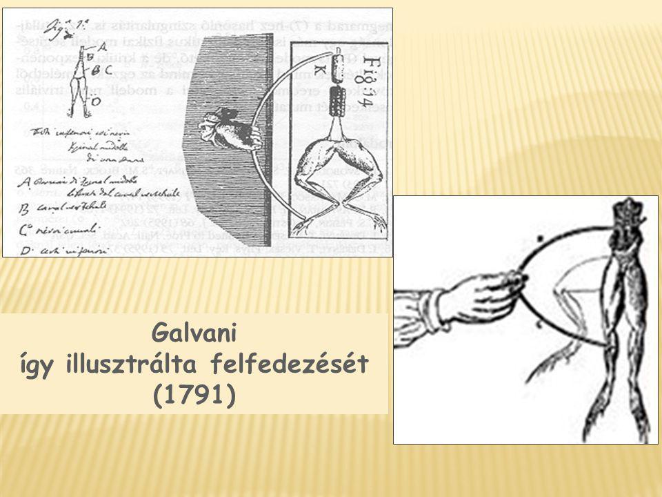 Galvani így illusztrálta felfedezését (1791)