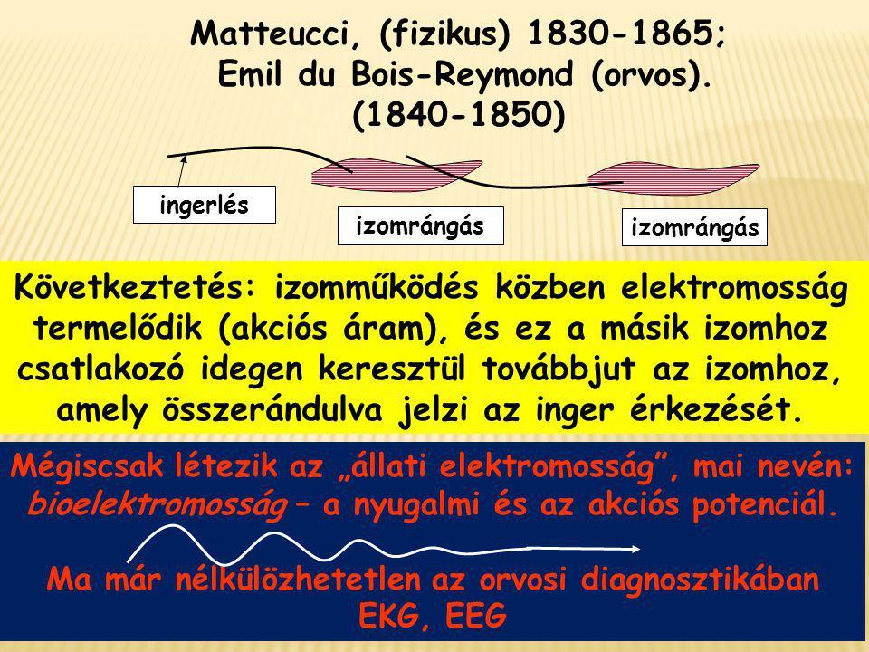 ingerlés izomrángás Matteucci, (fizikus) 1830-1865; Emil du Bois-Reymond (orvos). (1840-1850) Következtetés: izomműködés közben elektromosság termelőd