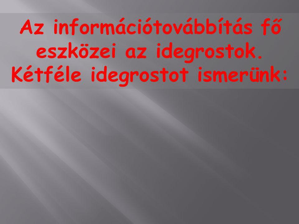 Az információtovábbítás fő eszközei az idegrostok. Kétféle idegrostot ismerünk:
