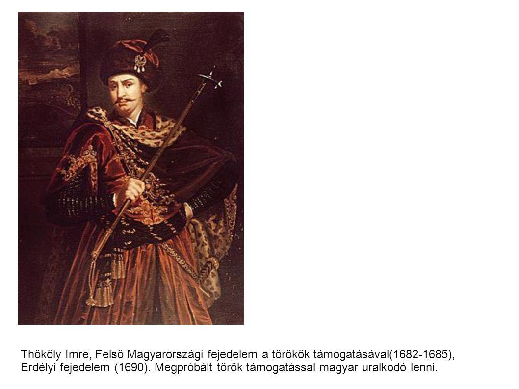 Thököly Imre, Felső Magyarországi fejedelem a törökök támogatásával(1682-1685), Erdélyi fejedelem (1690).