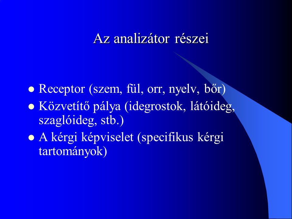 Az analizátor részei Receptor (szem, fül, orr, nyelv, bőr) Közvetítő pálya (idegrostok, látóideg, szaglóideg, stb.) A kérgi képviselet (specifikus kérgi tartományok)