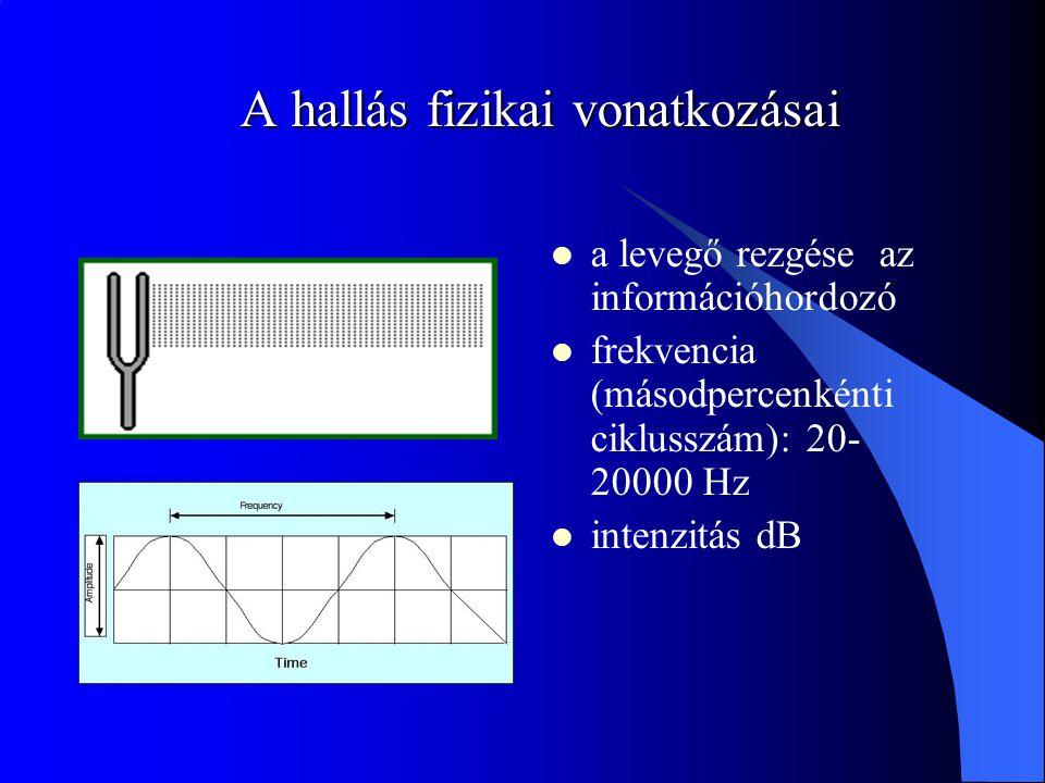 A hallás fizikai vonatkozásai a levegő rezgése az információhordozó frekvencia (másodpercenkénti ciklusszám): 20- 20000 Hz intenzitás dB