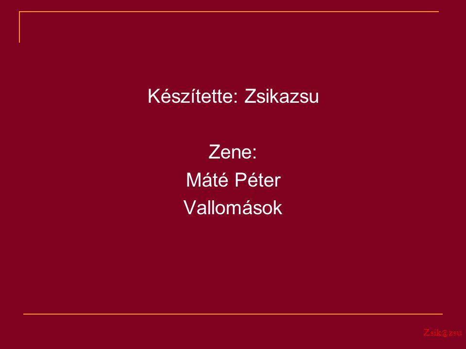 Zsik @ zsu