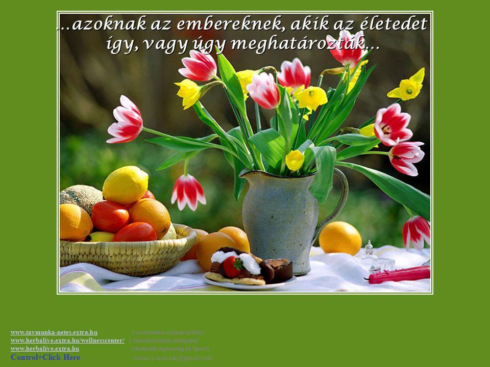 Ha akarod, tedd amit én, küldd el ezt az üzenetet azoknak, akik jelentenek neked valamit… www.tavmunka-netes.extra.huwww.tavmunka-netes.extra.hu ( mun