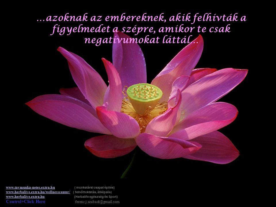 …azoknak az embereknek, akik megmosolyogtattak, amikor szükséged volt rá… www.tavmunka-netes.extra.huwww.tavmunka-netes.extra.hu ( munkatársi csapat é