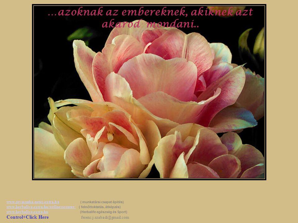 …azoknak az embereknek, akik felhívták a figyelmedet a szépre, amikor te csak negatívumokat láttál… www.tavmunka-netes.extra.huwww.tavmunka-netes.extr