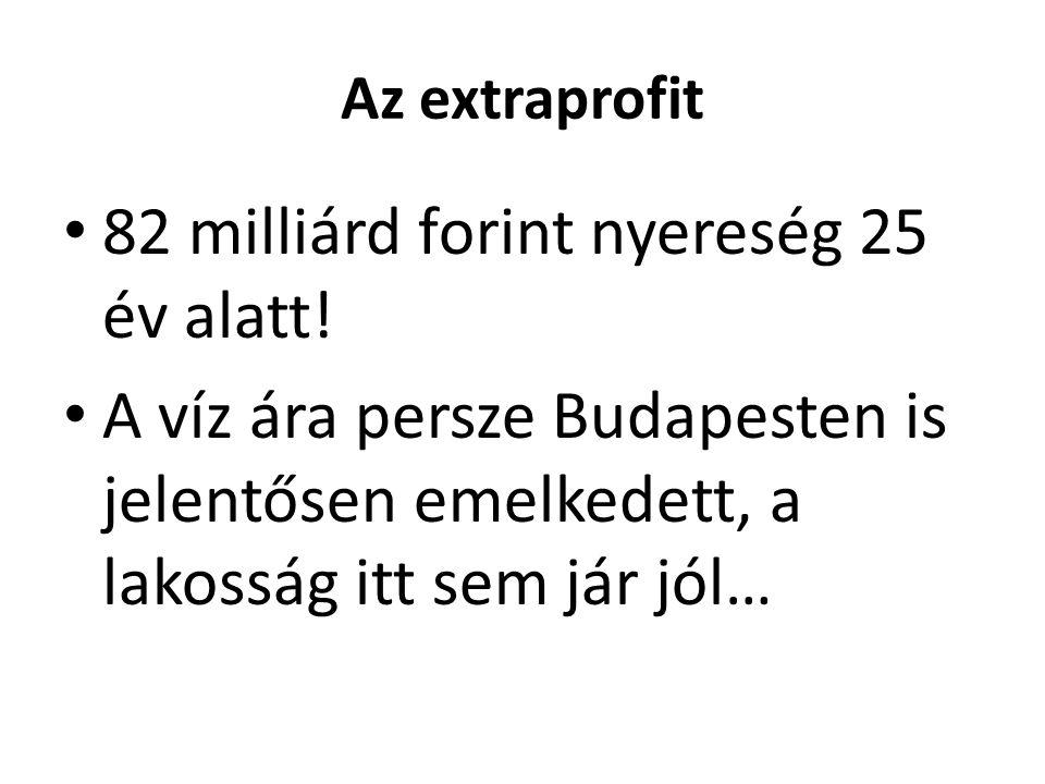 Az extraprofit 82 milliárd forint nyereség 25 év alatt.