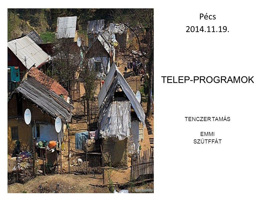 A TELEP PROGRAMOK 2010 Önálló társadalmi felzárkózásért felelős államtitkárság létrehozása 2011 Magyar elnökségi tevékenység kiemelkedő eredményeként az Európai Bizottság elfogadta a nemzeti romaintegrációs stratégiák uniós keretrendszerét [COM (2011) 173] 2011 Magyarország elkészítette és a tagállamok közül elsőként nyújtotta be Nemzeti Társadalmi Felzárkózási Stratégiát az Európai Bizottsághoz (mely rögzítette intézkedési tervében, hogy programokat kell indítani a telepszerű lakókörnyezet megszüntetésére) 2013 Az Alaptörvénybe bekerült a társadalmi felzárkózás fogalma [XV.