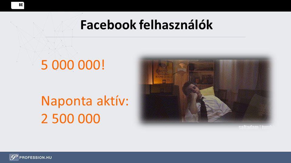 Facebook felhasználók 5 000 000! Naponta aktív: 2 500 000
