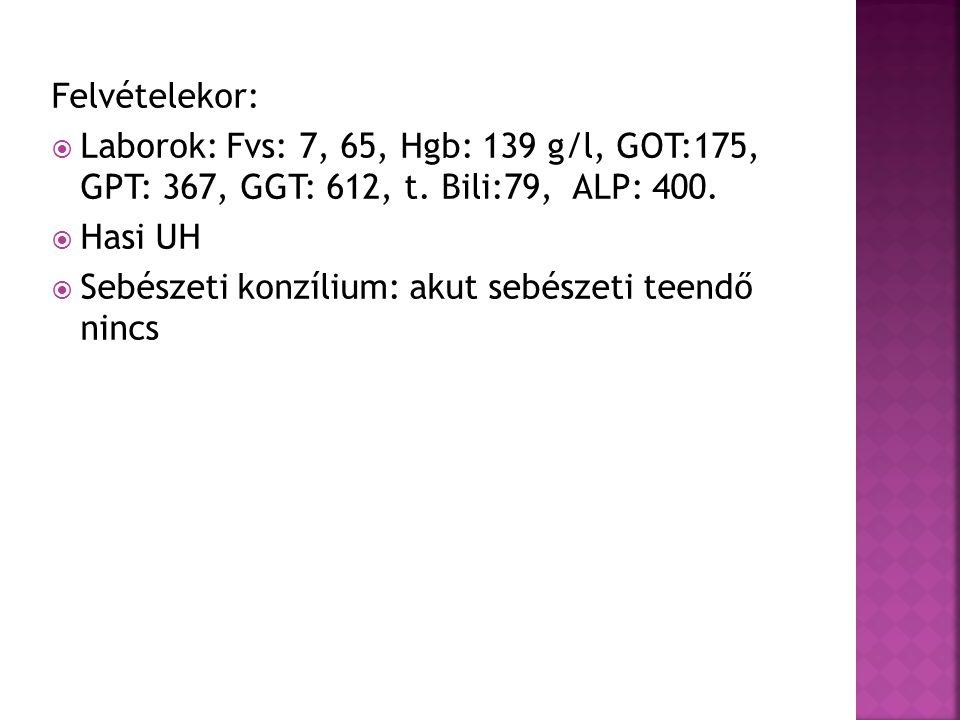 Felvételekor:  Laborok: Fvs: 7, 65, Hgb: 139 g/l, GOT:175, GPT: 367, GGT: 612, t.