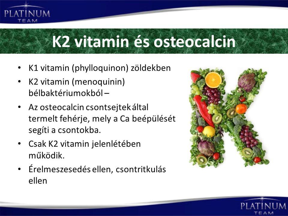 K2 vitamin és osteocalcin K1 vitamin (phylloquinon) zöldekben K2 vitamin (menoquinin) bélbaktériumokból – Az osteocalcin csontsejtek által termelt fehérje, mely a Ca beépülését segíti a csontokba.
