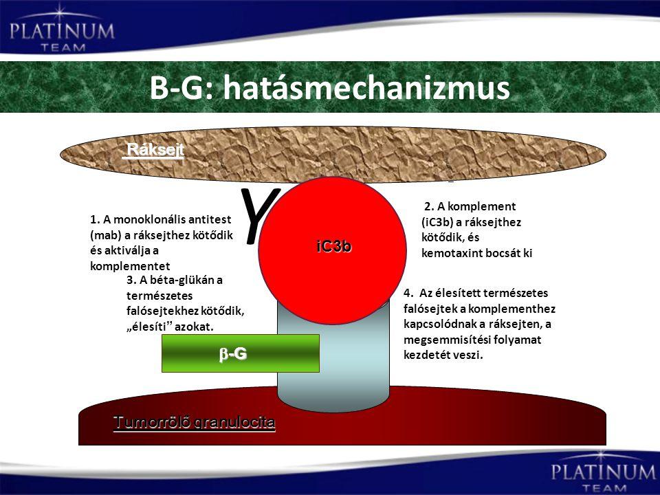 B-G: hatásmechanizmus Tumorrölő granulocita 3.