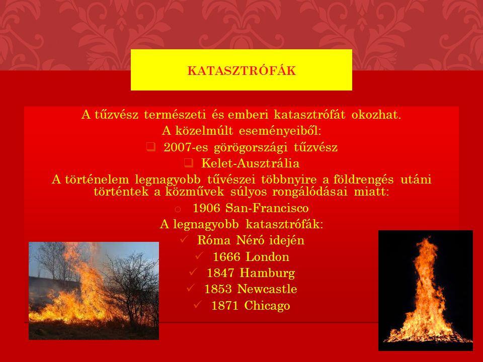 A tűzvész természeti és emberi katasztrófát okozhat. A közelmúlt eseményeiből:  2007-es görögországi tűzvész  Kelet-Ausztrália A történelem legnagyo