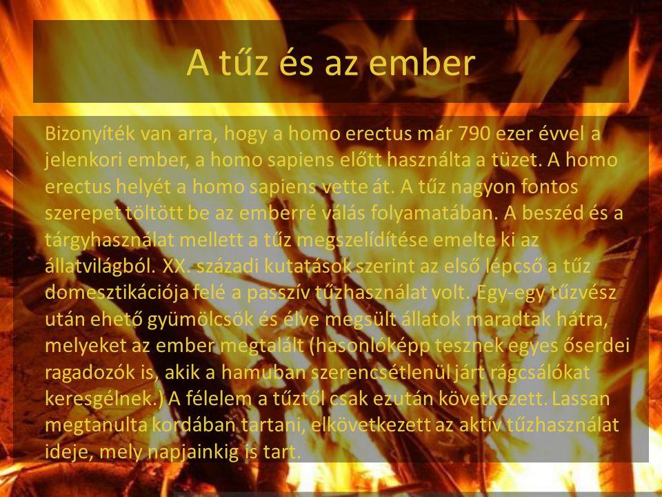 Katasztrófák A tűzvész természeti és emberi katasztrófát okozhat.