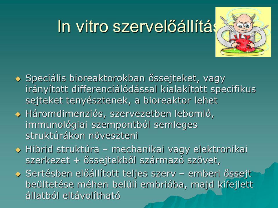In vitro szervelőállítás  Speciális bioreaktorokban őssejteket, vagy irányított differenciálódással kialakított specifikus sejteket tenyésztenek, a b