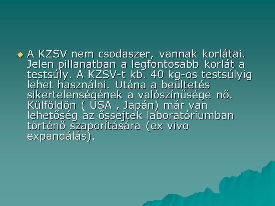  A KZSV nem csodaszer, vannak korlátai. Jelen pillanatban a legfontosabb korlát a testsúly. A KZSV-t kb. 40 kg-os testsúlyig lehet használni. Utána a