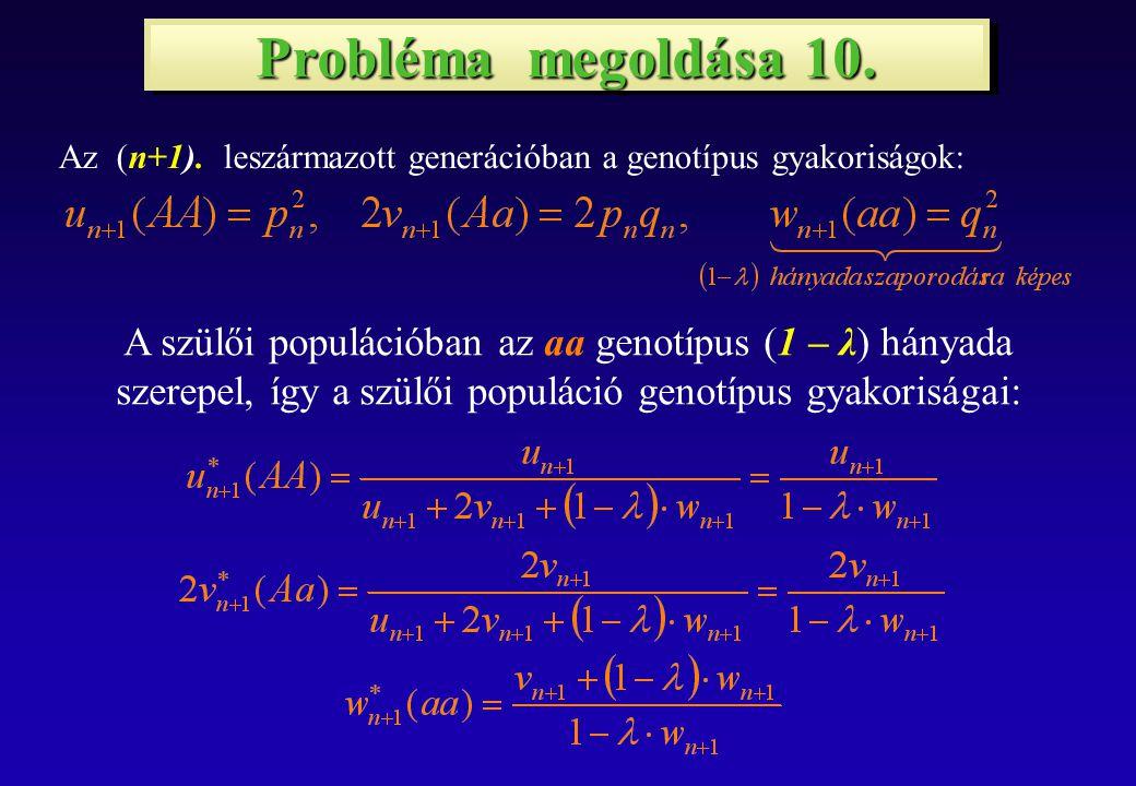 Probléma megoldása 10. Az (n+1).