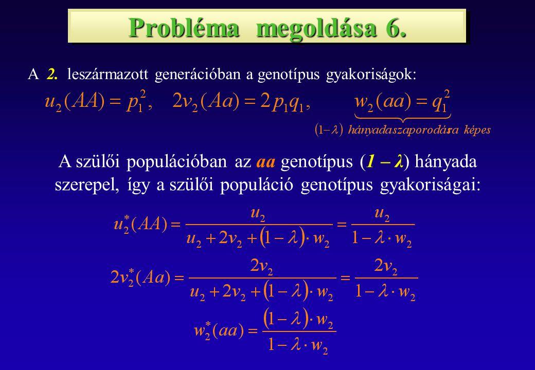 Probléma megoldása 6. A 2.