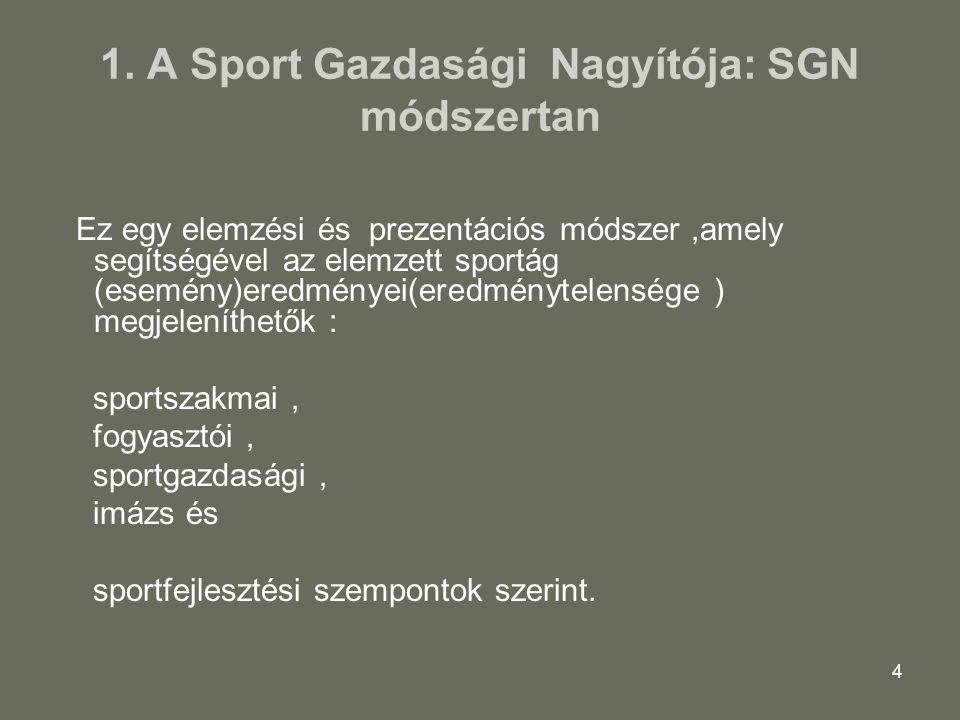 45Sportgazdasági Nagyító 201345 Sportgazdasági 14 Konklúzió A liga sportvállalkozásainak gazdasági folyamatai évek óta változatlanúl rossz irányba mennek: az utóbbi időben 3 évben jelentősen veszteségesek a klubok (10.5md FT) a saját tőke fogy felélődik (2011 +5.2 md 2013.