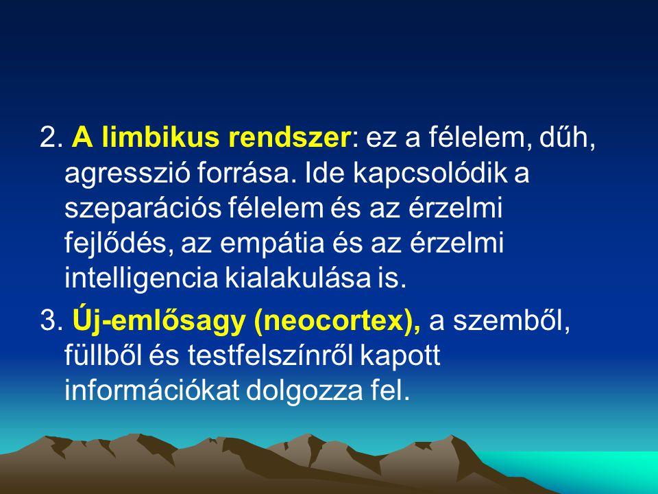 2. A limbikus rendszer: ez a félelem, dűh, agresszió forrása. Ide kapcsolódik a szeparációs félelem és az érzelmi fejlődés, az empátia és az érzelmi i