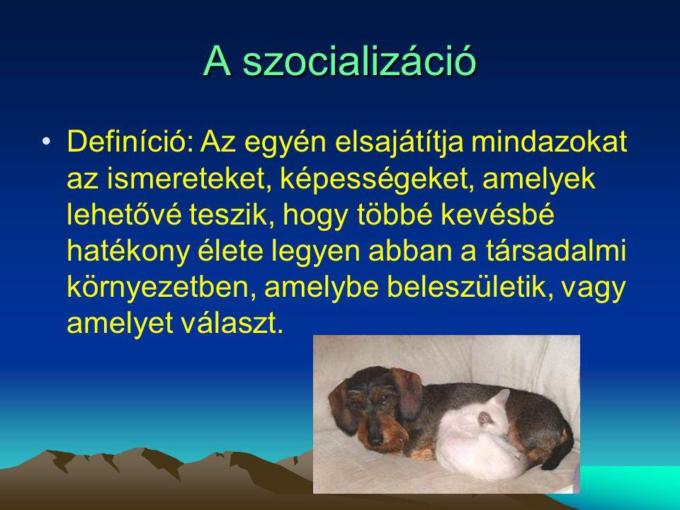 A szocializáció Definíció: Az egyén elsajátítja mindazokat az ismereteket, képességeket, amelyek lehetővé teszik, hogy többé kevésbé hatékony élete le