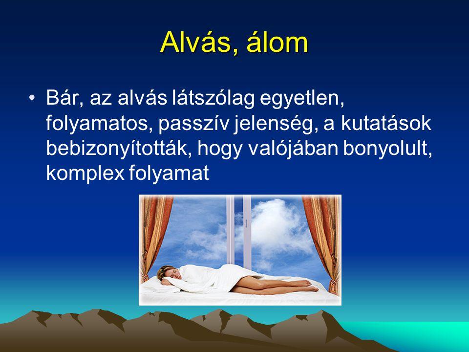 Alvás, álom Bár, az alvás látszólag egyetlen, folyamatos, passzív jelenség, a kutatások bebizonyították, hogy valójában bonyolult, komplex folyamat