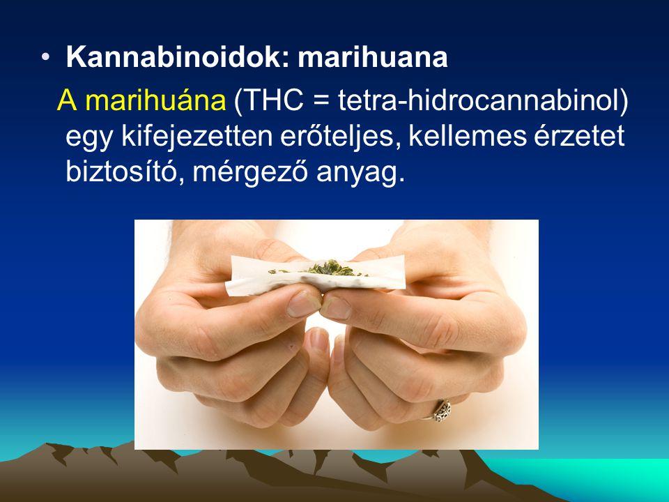 Kannabinoidok: marihuana A marihuána (THC = tetra-hidrocannabinol) egy kifejezetten erőteljes, kellemes érzetet biztosító, mérgező anyag.