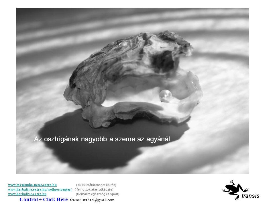 SABIAS QUE… A csótány 9 napot képes élni fej nélkül.