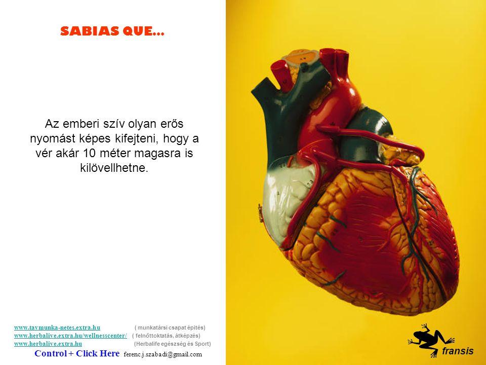 SABIAS QUE… Érdekességek… Bohóságok… Hahaha… ha… fransis www.tavmunka-netes.extra.huwww.tavmunka-netes.extra.hu ( munkatársi csapat épités) www.herbalive.extra.hu/wellnesscenter/ ( felnőttoktatás, átképzés) www.herbalive.extra.hu (Herbalife egészség és Sport) Control + Click Here ferenc.j.szabadi@gmail.com www.herbalive.extra.hu/wellnesscenter/ www.herbalive.extra.hu