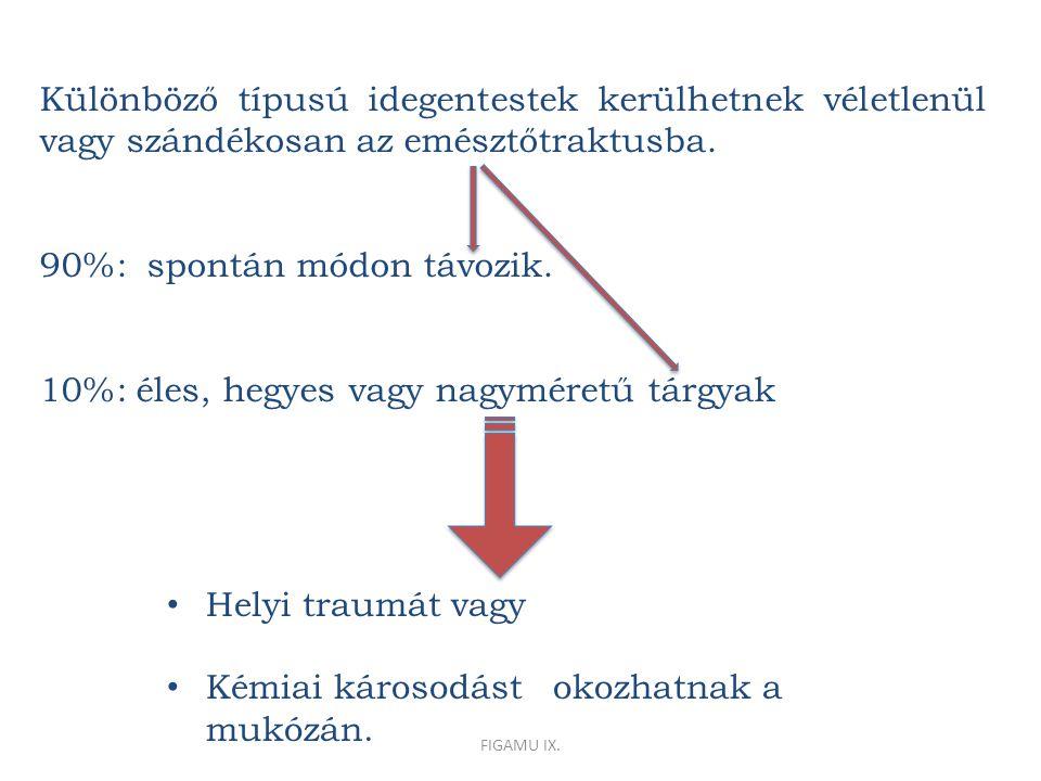 Különböző típusú idegentestek kerülhetnek véletlenül vagy szándékosan az emésztőtraktusba.
