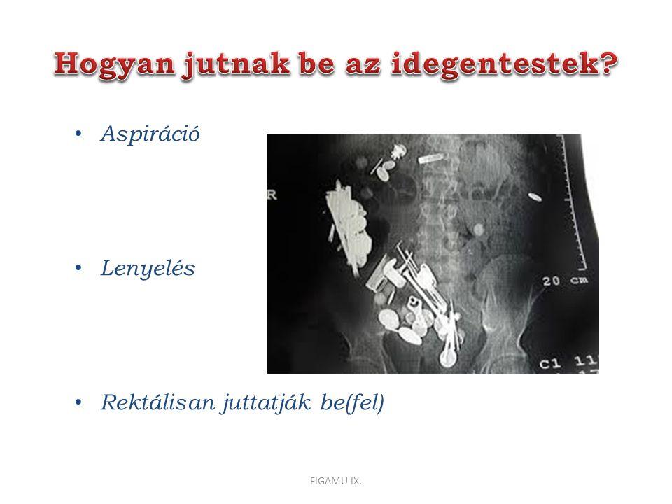 Aspiráció Lenyelés Rektálisan juttatják be(fel) FIGAMU IX.