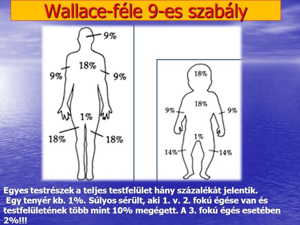 Wallace-féle 9-es szabály Egyes testrészek a teljes testfelület hány százalékát jelentik. Egy tenyér kb. 1%. Súlyos sérült, aki 1. v. 2. fokú égése va