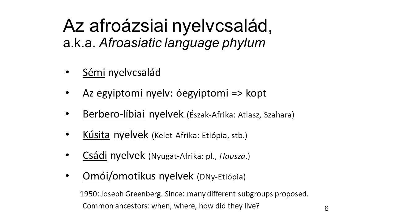 6 Az afroázsiai nyelvcsalád, a.k.a. Afroasiatic language phylum Sémi nyelvcsalád Az egyiptomi nyelv: óegyiptomi => kopt Berbero-líbiai nyelvek (Észak-