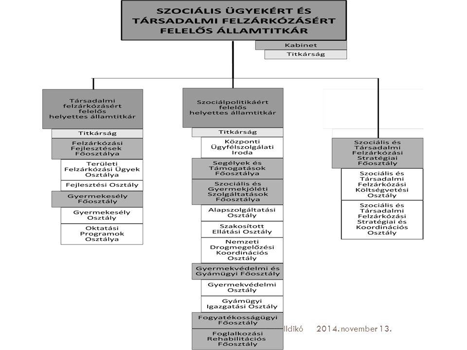 Szociálpolitikáért felelős helyettes államtitkárság 2014. november 13.Krizsán Ildikó