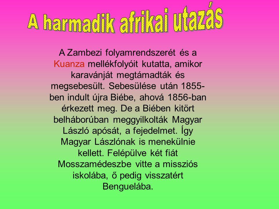 A Zambezi folyamrendszerét és a Kuanza mellékfolyóit kutatta, amikor karavánját megtámadták és megsebesült.