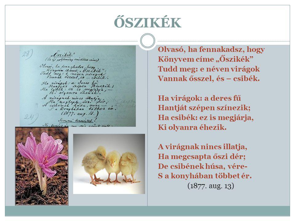 """ŐSZIKÉK Olvasó, ha fennakadsz, hogy Könyvem címe """"Őszikék"""" Tudd meg: e néven virágok Vannak ősszel, és – csibék. Ha virágok: a deres fű Hantját szépen"""