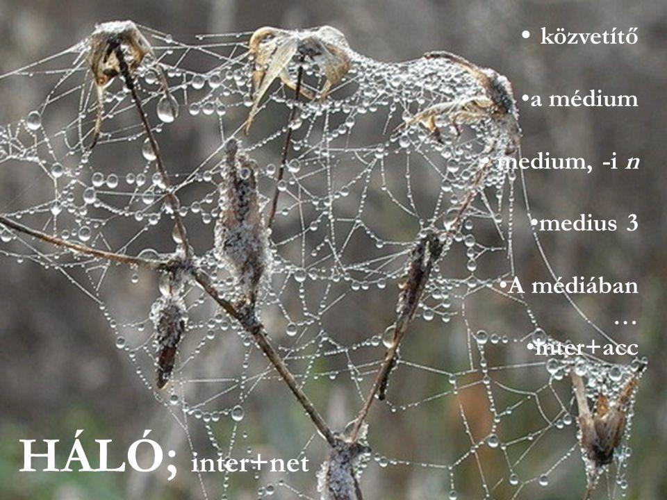 közvetítő a médium medium, -i n medius 3 A médiában … inter+acc HÁLÓ; inter+net