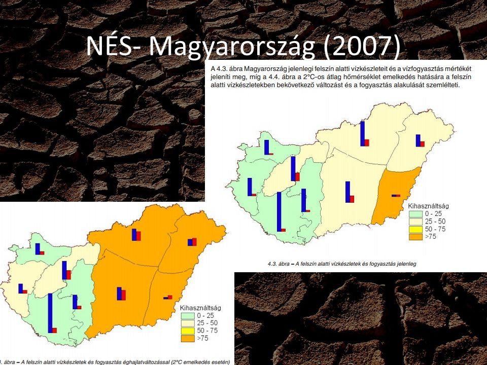 NÉS- Magyarország (2007)
