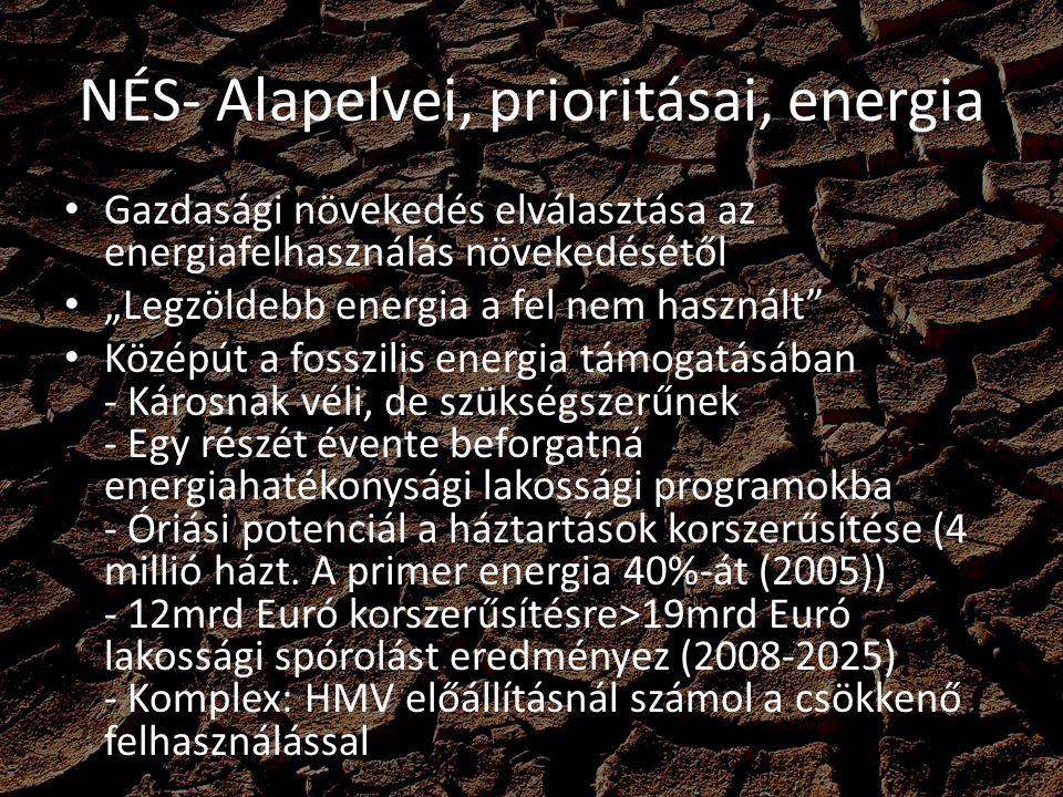 """NÉS- Alapelvei, prioritásai, energia Gazdasági növekedés elválasztása az energiafelhasználás növekedésétől """"Legzöldebb energia a fel nem használt"""" Köz"""