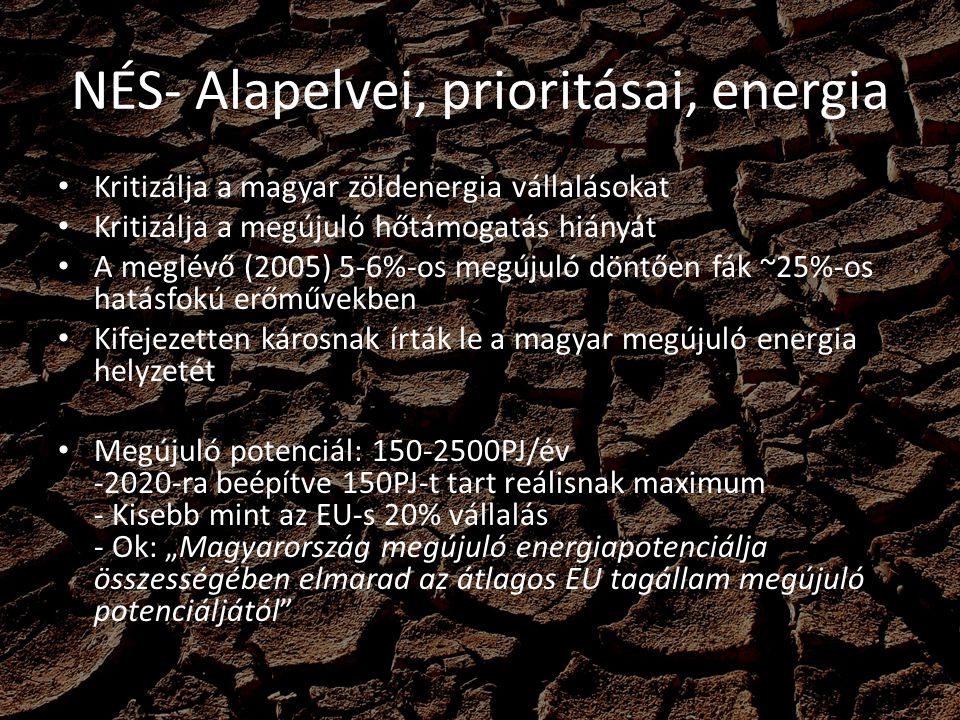 NÉS- Alapelvei, prioritásai, energia Kritizálja a magyar zöldenergia vállalásokat Kritizálja a megújuló hőtámogatás hiányát A meglévő (2005) 5-6%-os m