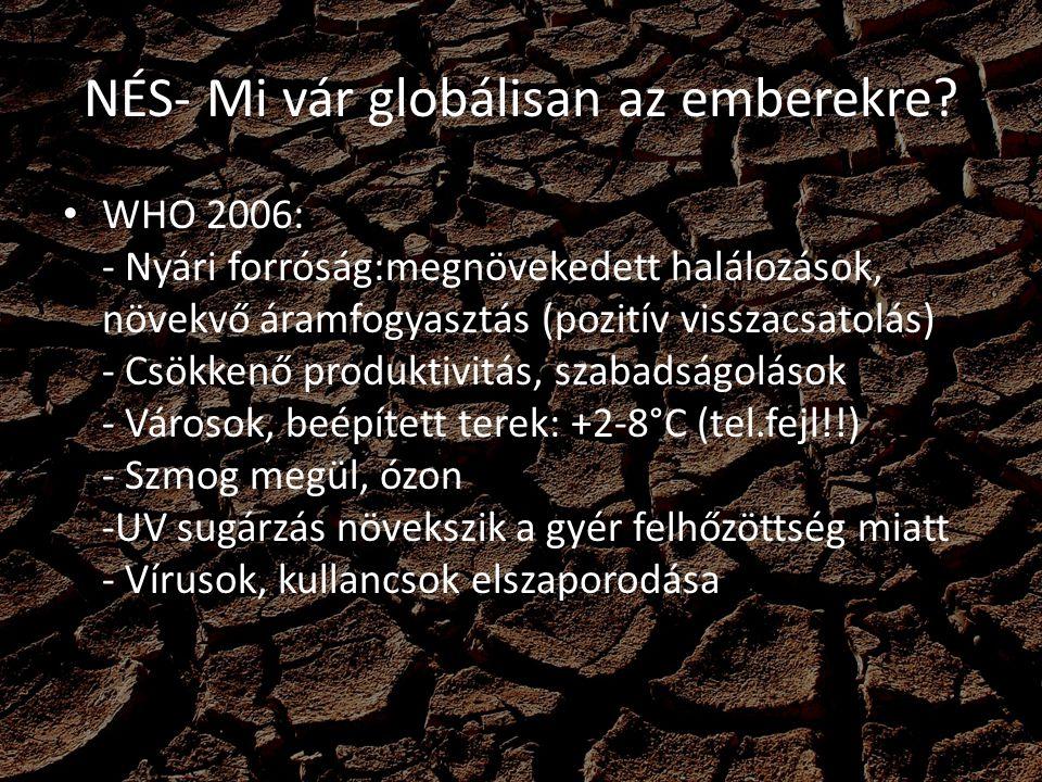 NÉS- Mi vár globálisan az emberekre? WHO 2006: - Nyári forróság:megnövekedett halálozások, növekvő áramfogyasztás (pozitív visszacsatolás) - Csökkenő