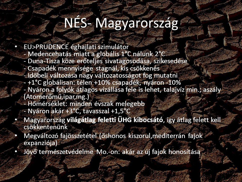 NÉS- Magyarország EU>PRUDENCE éghajlati szimulátor - Medencehatás miatt a globális 1°C nálunk 2°C - Duna-Tisza köze erőteljes sivatagosodása, szikesedése - Csapadék mennyisége stagnál, kis csökkenés - Időbeli változása nagy változatosságot fog mutatni - +1°C globálisan: télen +10% csapadék, nyáron -10% - Nyáron a folyók átlagos vízállása fele is lehet, talajvíz min.; aszály (Atomerőmű,ipar,mg.) - Hőmérséklet: minden évszak melegebb - Nyáron akár +3°C, tavasszal +1,5°C Magyarország világátlag feletti ÜHG kibocsátó, így átlag felett kell csökkentenünk Megváltozó fajösszetétel (őshonos kiszorul,mediterrán fajok expanziója) Jövő természetvédelme Mo.-on: akár az új fajok honosítása