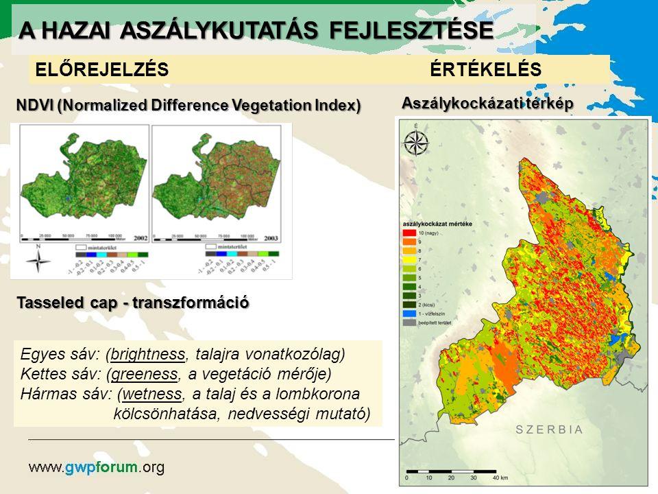 A HAZAI ASZÁLYKUTATÁS FEJLESZTÉSE ELŐREJELZÉSÉRTÉKELÉS NDVI (Normalized Difference Vegetation Index) Tasseled cap - transzformáció Egyes sáv: (brightn
